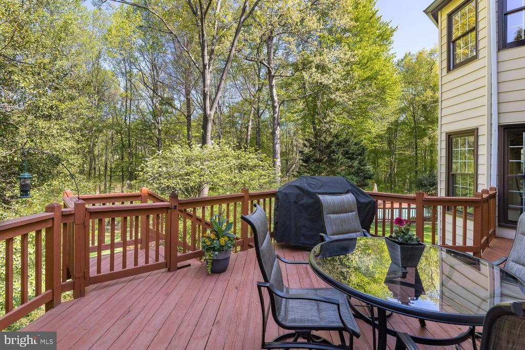 Entertainment Deck w/Secure Gate to Stairs! - 10654 CANTERBERRY RD, FAIRFAX STATION