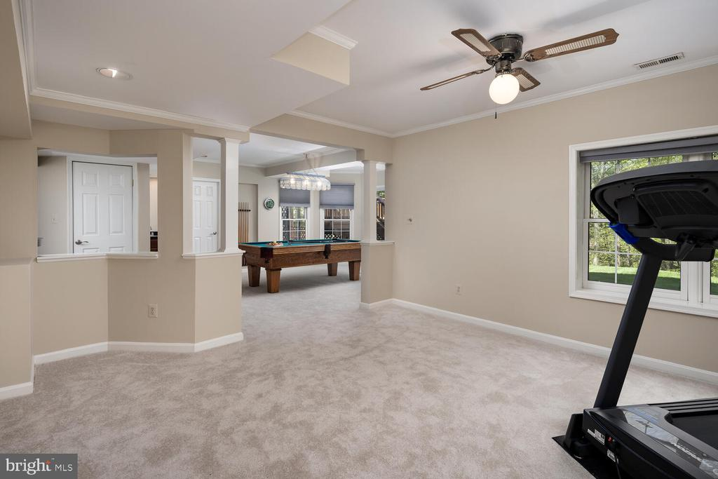 Recreation Room with Full Rear Window - 10654 CANTERBERRY RD, FAIRFAX STATION