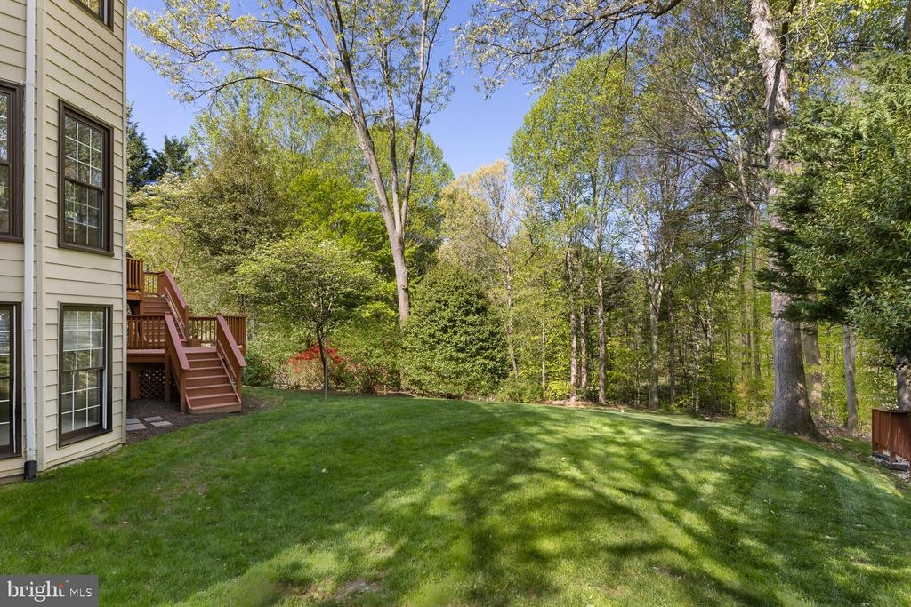 Spacious and Open Backyard - 10654 CANTERBERRY RD, FAIRFAX STATION