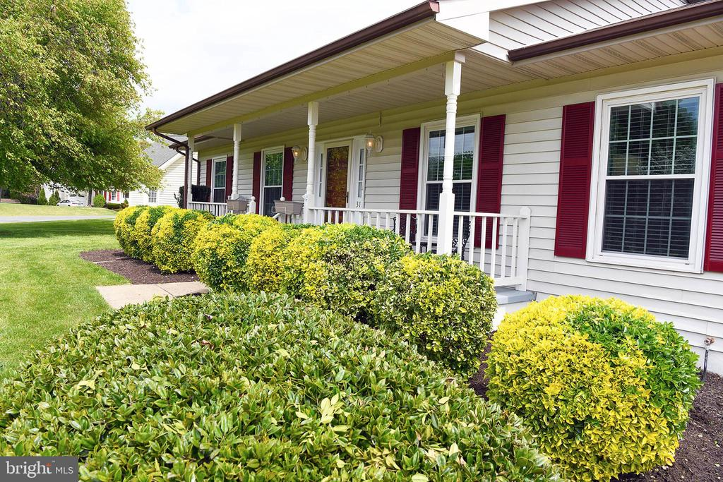 Mature landscaping for curb appeal galore - 312 SYCAMORE DR, FREDERICKSBURG