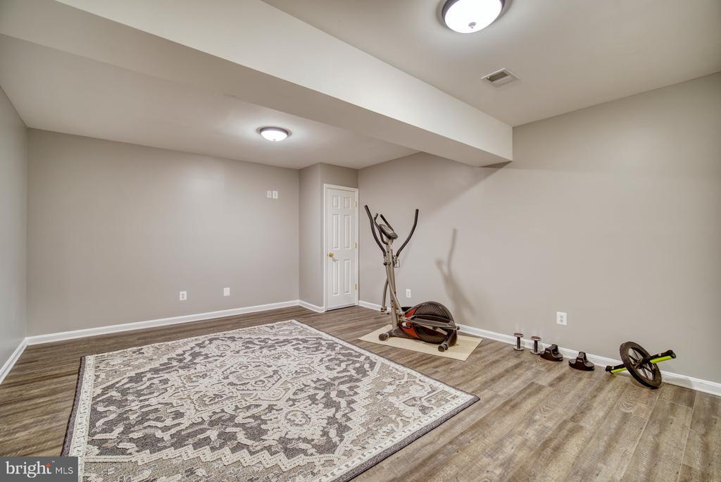 Bonus room on Lower Level - 2645 BLACK FIR CT, RESTON