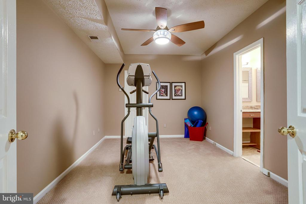 Can be used for gym, office, kid area. - 1206 WOODBROOK CT, RESTON