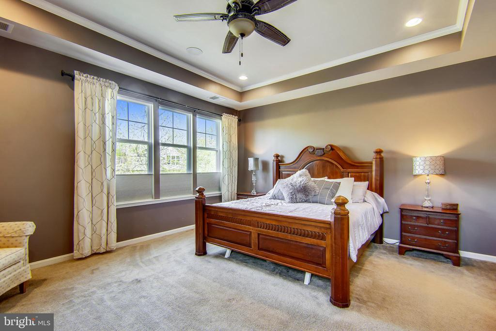 Gorgeous tray ceiling, wooded views - 23397 MORNING WALK DR, BRAMBLETON