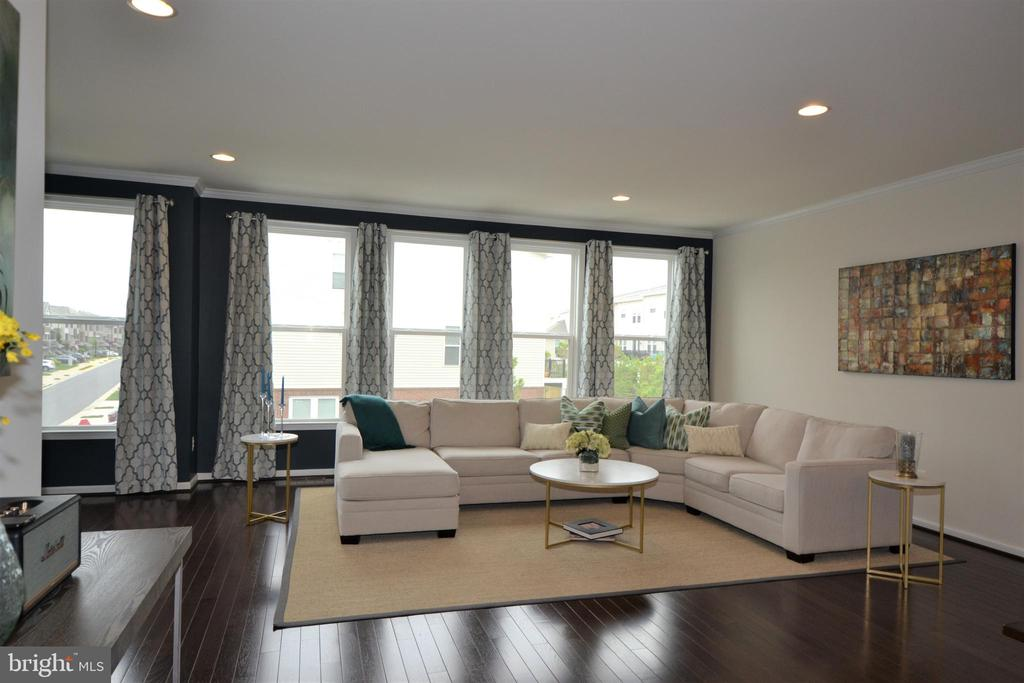 Lots of Natural Light Living Room - 42286 KNOTTY OAK TER, BRAMBLETON