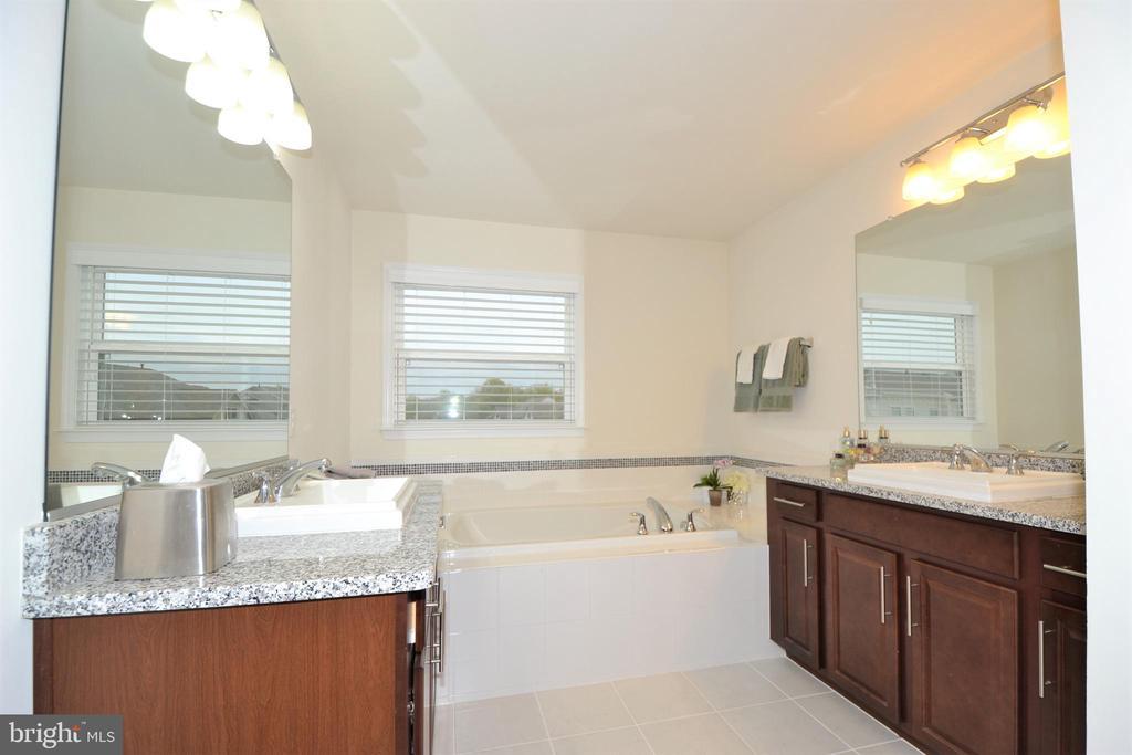 Owner's Sauna like Bathroom - 42286 KNOTTY OAK TER, BRAMBLETON