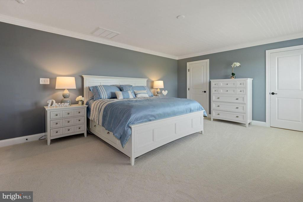 owners bedroom - 24177 STATESBORO PL, ASHBURN
