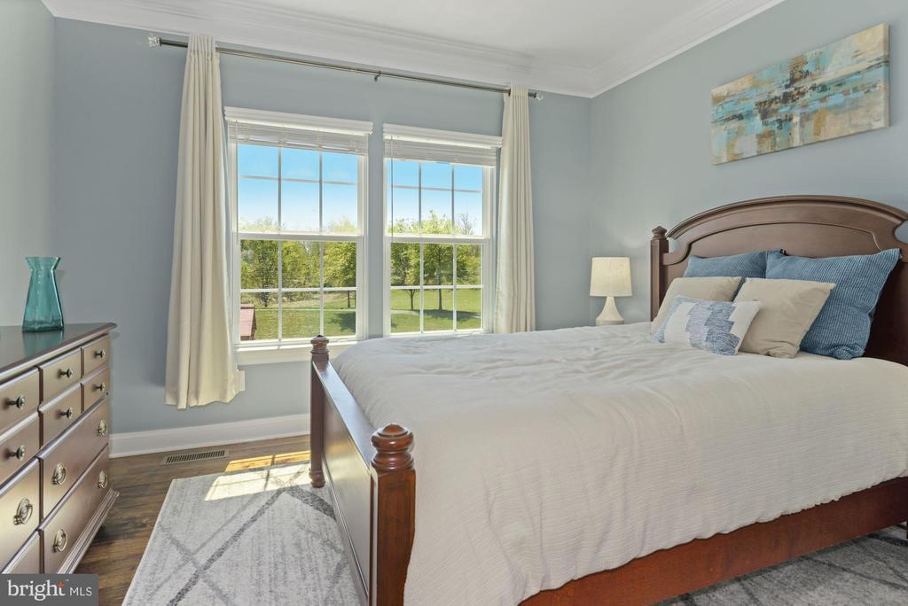 main level bedroom - 24177 STATESBORO PL, ASHBURN