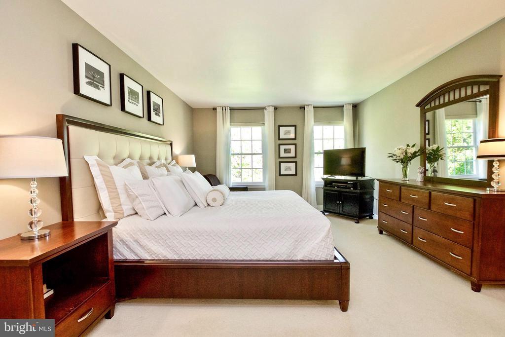 Large Owner's Suite! - 20766 RIVERBIRCH PL, STERLING