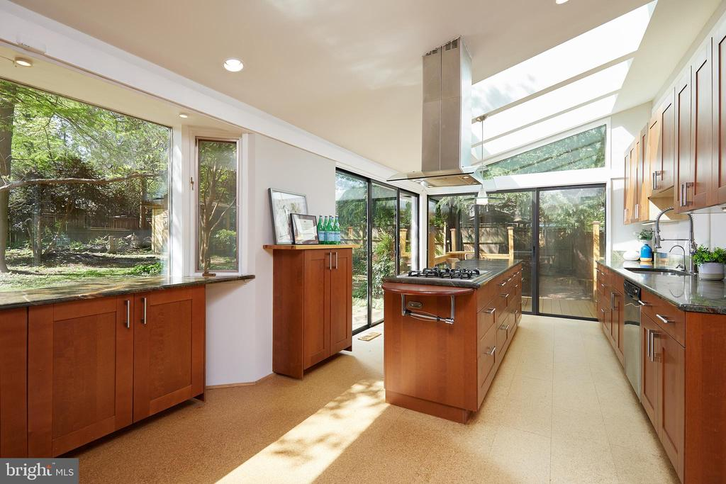 Window and skylights everywhere in the kitchen - 11530 HIGHVIEW AVE, SILVER SPRING