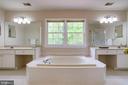 Luxurious soaking tub - 20631 BRIDGEPORT CT, STERLING