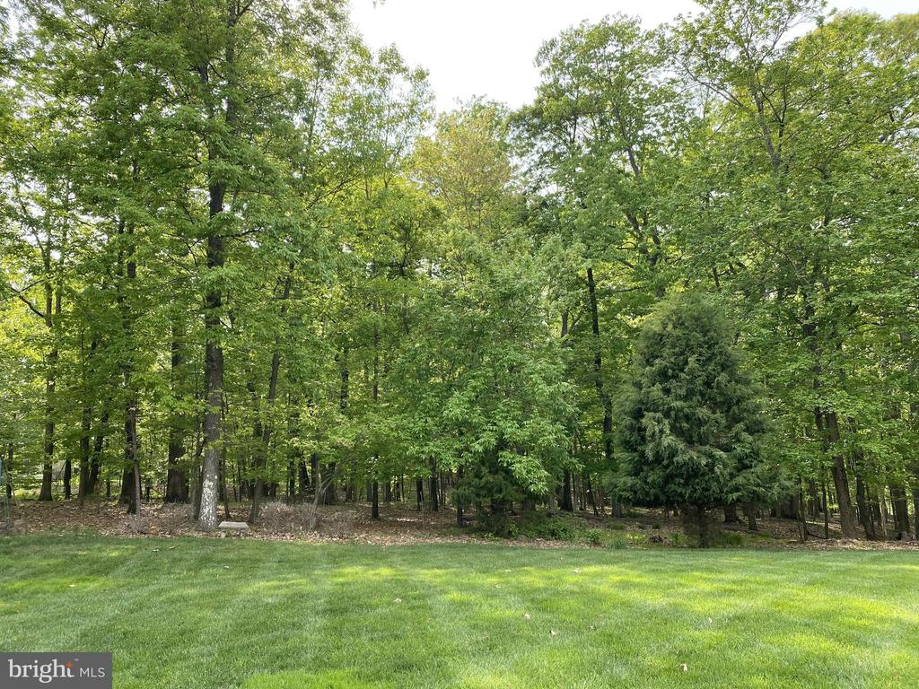 Backs to common area with lush trees - 43768 RIVERPOINT DR, LEESBURG