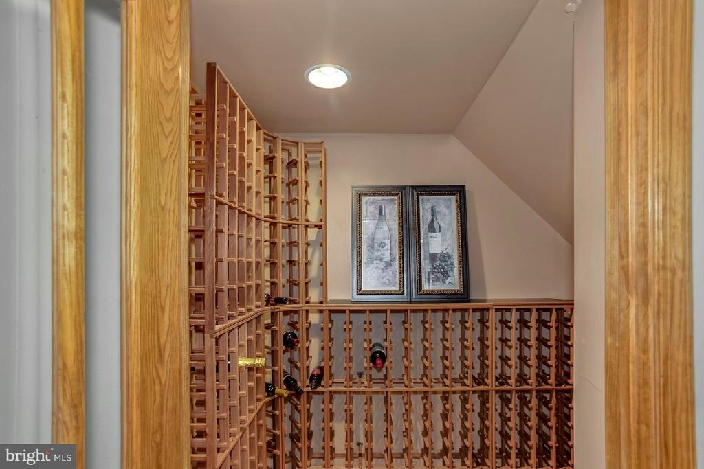 Wine rack can hold up to 400 bottles! - 122 BALCH SPRINGS CIR SE, LEESBURG