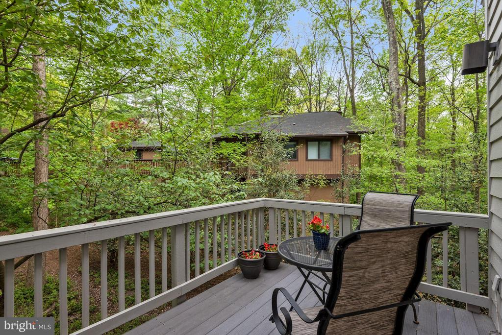 Private Kitchen deck for morning coffee - 2108 OWLS COVE LN, RESTON