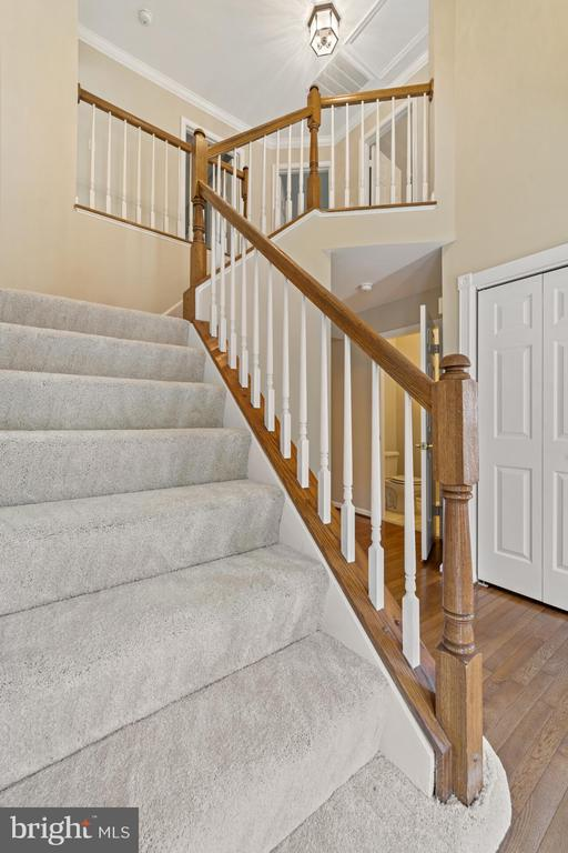 Open foyer - 8104 CREEKVIEW DR, SPRINGFIELD