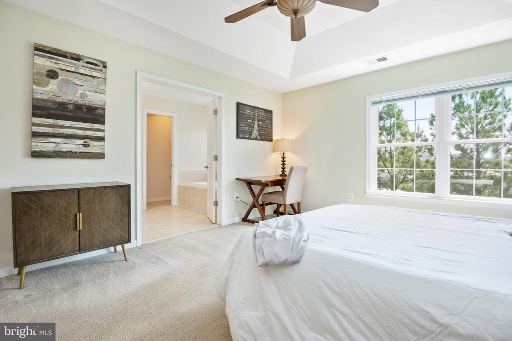 Plenty of space in this main bedroom - 115 GRACIE PARK DR, HERNDON