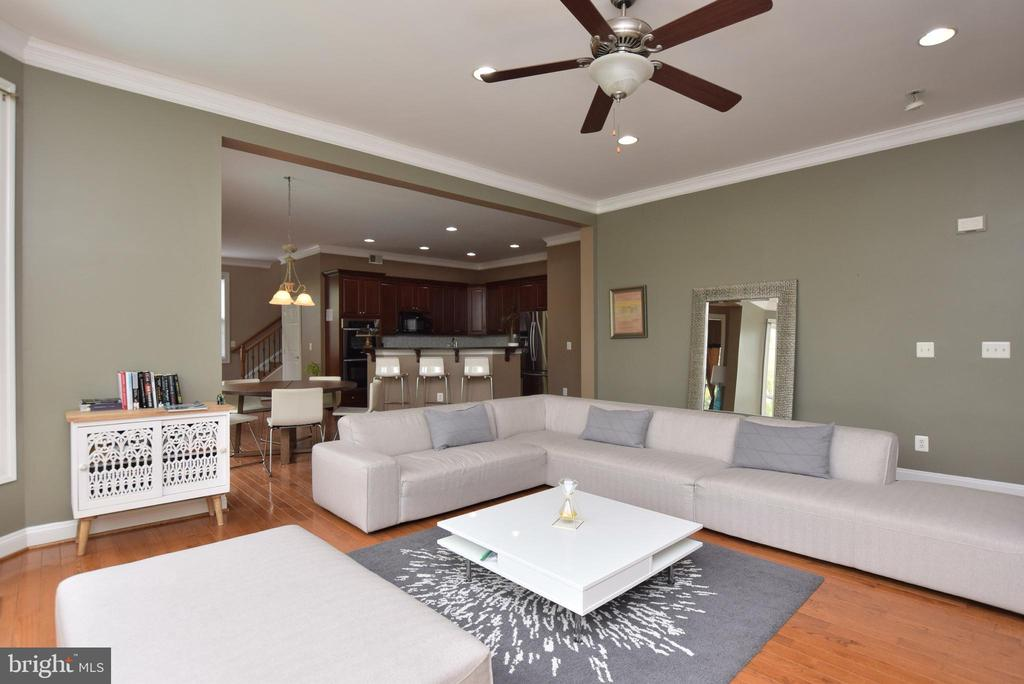 Family Room - 43341 CEDAR POND PL, CHANTILLY
