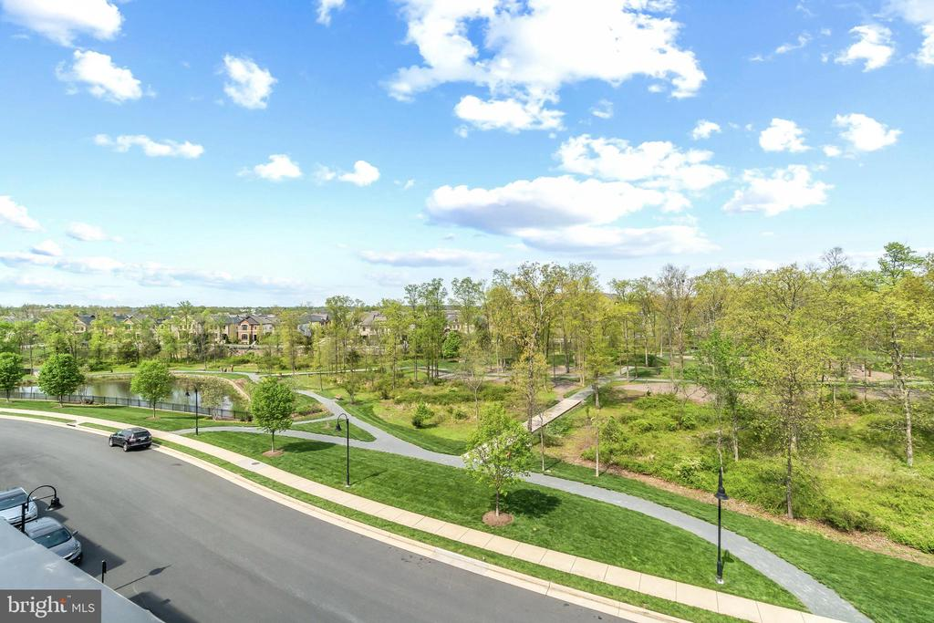 View from the Terrace overlooking Central Park - 20382 NORTHPARK DR, ASHBURN