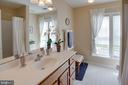 Expansive Hall Bath - 42624 LEGACY PARK DR, BRAMBLETON