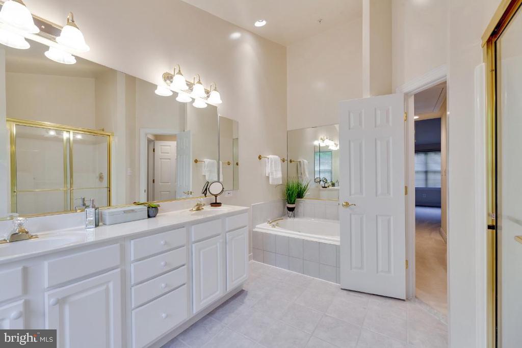 Note the Jazuzzi tub in this large bathroom - 2621 FAIRFAX DR, ARLINGTON
