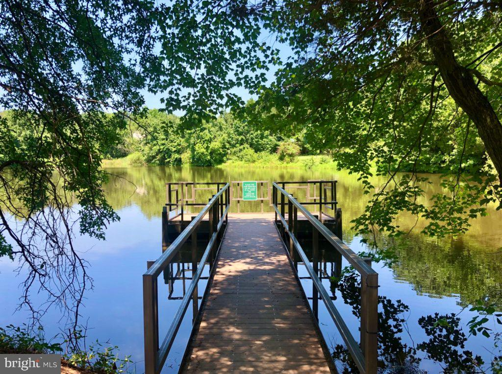 Fishing Piers - 25466 GIMBEL DR, CHANTILLY