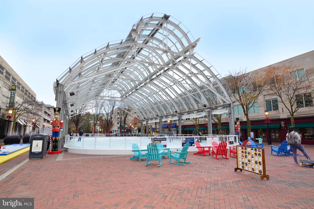 Go Skating at the Reston Town Center - 12025 NEW DOMINION PKWY #311, RESTON