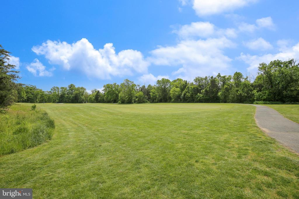 Open Spaces, Paved Walking Trails - 43690 MINK MEADOWS ST, CHANTILLY