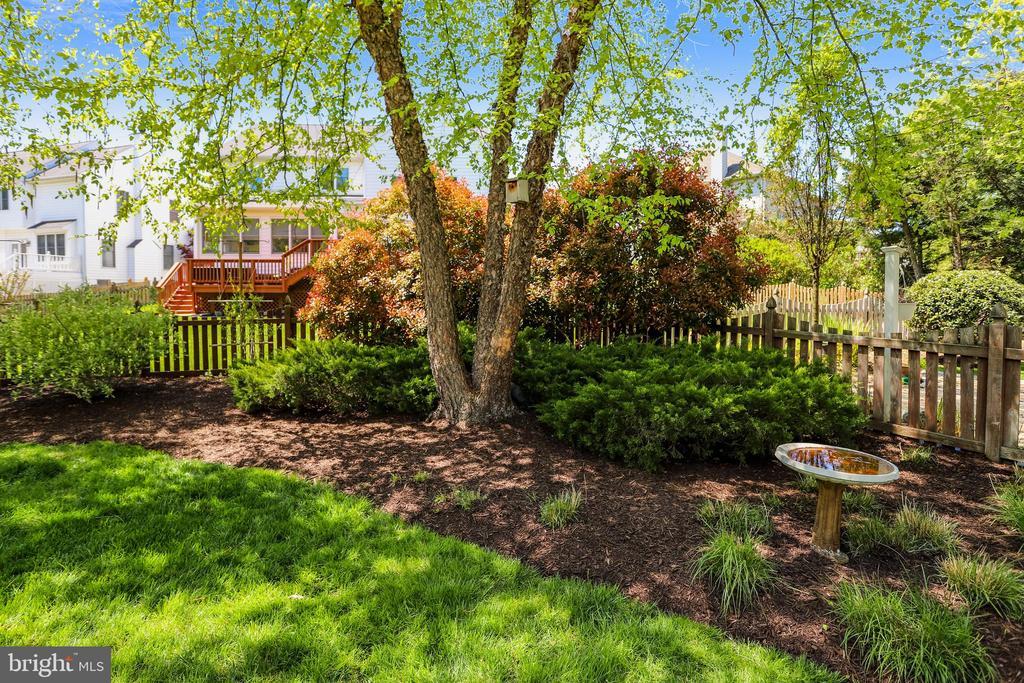 Backyard Picker Fence and Garden - 43690 MINK MEADOWS ST, CHANTILLY
