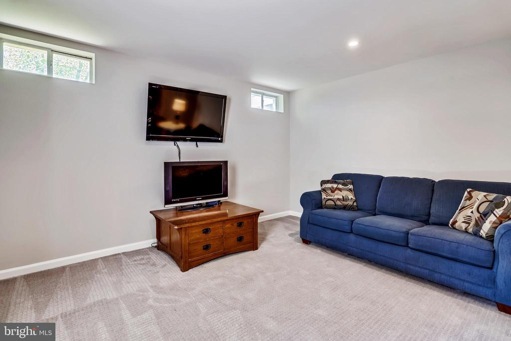 Finished Recreation Room - 43690 MINK MEADOWS ST, CHANTILLY