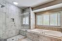 Remodeled Primary Bath, Large Shower - 43690 MINK MEADOWS ST, CHANTILLY