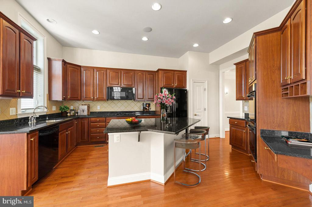 Gourmet kitchen with extra cabinetry. - 43575 WILD INDIGO TER, LEESBURG