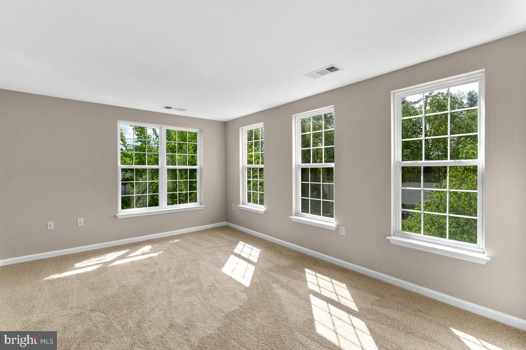Bright Spacious Primary Bedroom - 8050 NICOSH CIRCLE LN #42, FALLS CHURCH