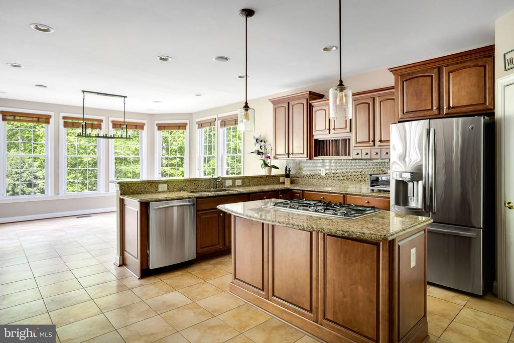 Kitchen with granite and stainless appliances - 43768 RIVERPOINT DR, LEESBURG