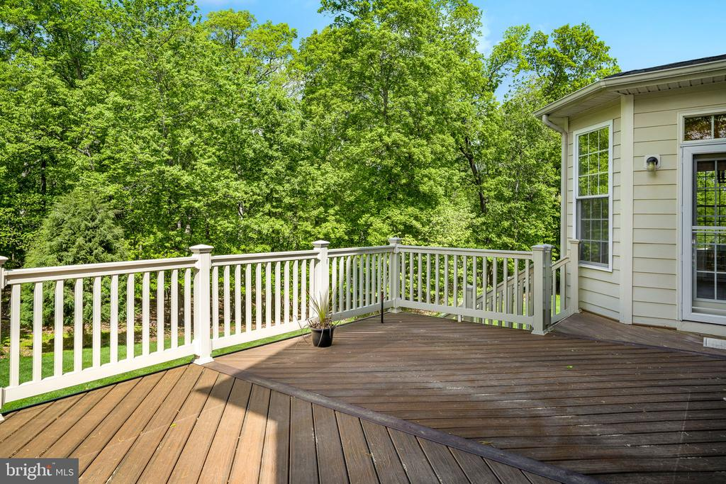 The tree views from the deck are truly incredible - 43768 RIVERPOINT DR, LEESBURG
