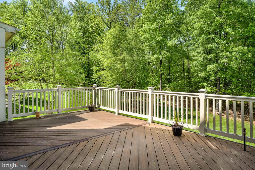Large trex deck features a gas stub for grill - 43768 RIVERPOINT DR, LEESBURG