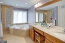 Dual vanity, oversized soaking tub - 24960 ASHGARTEN DR, CHANTILLY