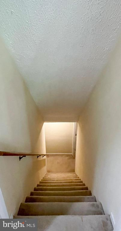 Stairway to the basement - 1501 BROOKE RD, STAFFORD