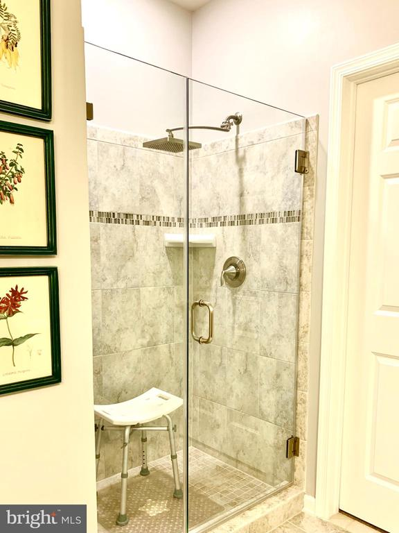 Roomy frameless standing shower - 20640 HOPE SPRING TER #401, ASHBURN