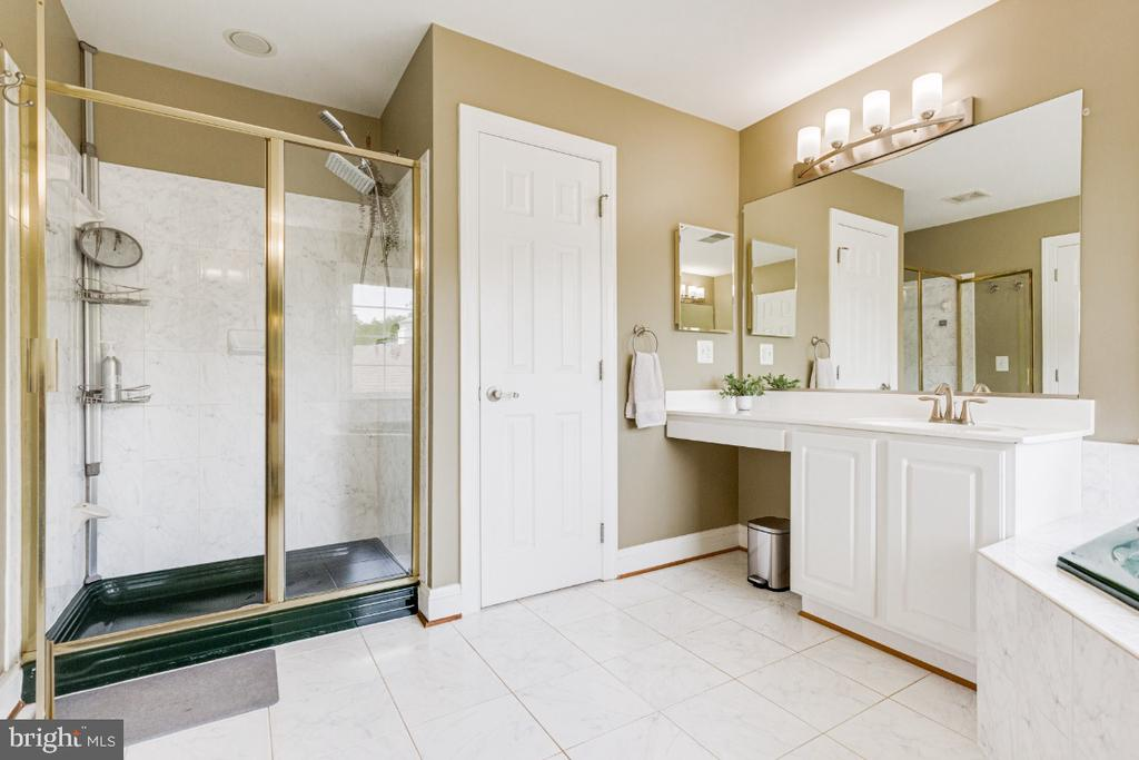 Stand up shower and separate vanity in master bath - 42308 GREEN MEADOW LN, LEESBURG
