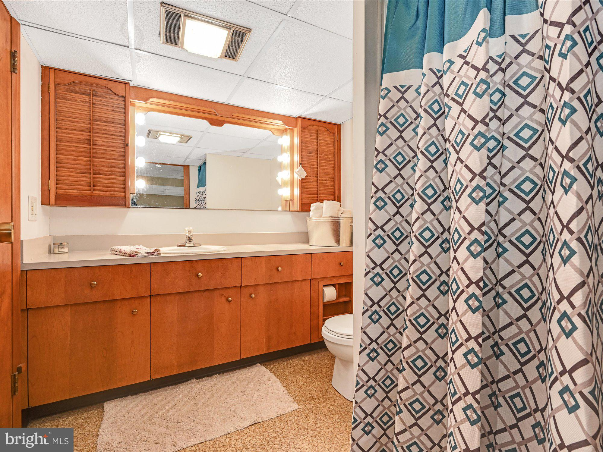 Basement bath with shower stall