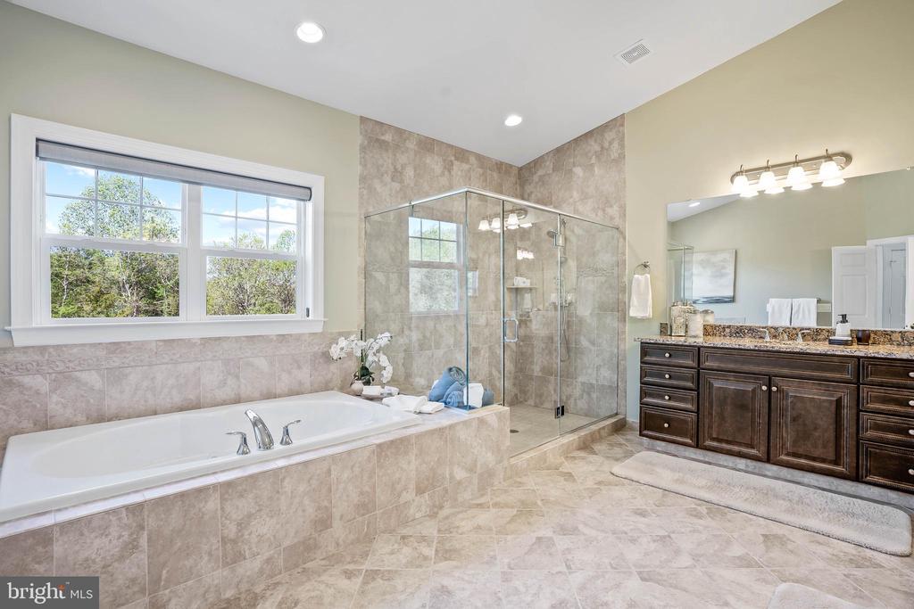 Luxurious spa bathroom - 20585 STONE FOX CT, LEESBURG
