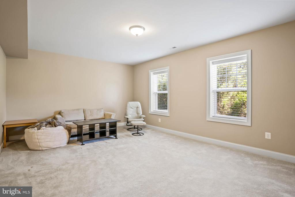 Fifth bedroom on lower level - 20585 STONE FOX CT, LEESBURG