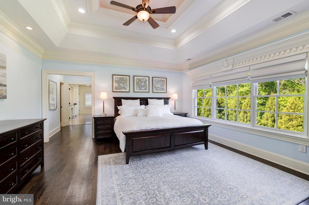 Owner's Bedroom Suite - Ceiling Fan - 957 MACKALL FARMS LN, MCLEAN