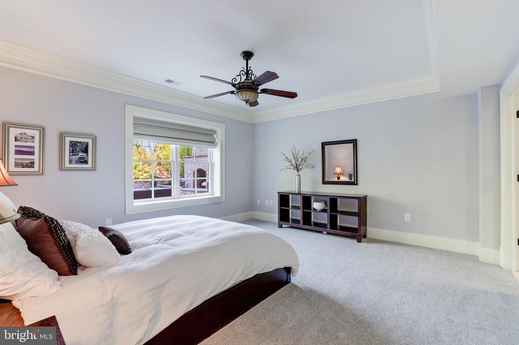 Bedroom #7 (Lower Level) - 957 MACKALL FARMS LN, MCLEAN
