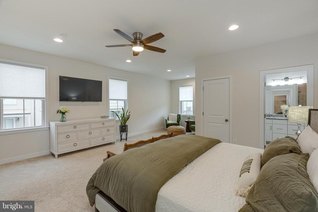 Master bedroom - lots of natural light - 42280 IMPERVIOUS TER, BRAMBLETON
