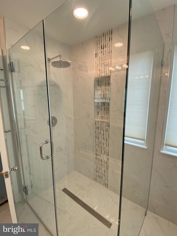 Amazing owner's bath.   Superb shower! - 21606 GOODWIN CT, BROADLANDS