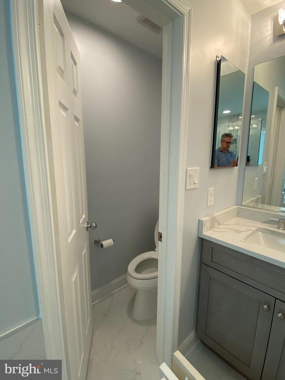 Amazing owner's bath - 21606 GOODWIN CT, BROADLANDS