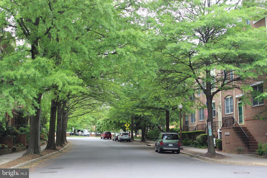 In the pulse of Arlington and tree-lined street - 2621 FAIRFAX DR, ARLINGTON