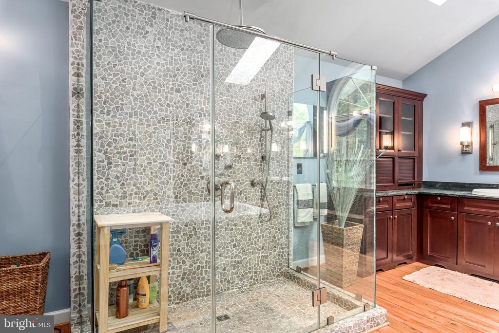 Master Bath Shower - 20441 WINFIELD PL, STERLING