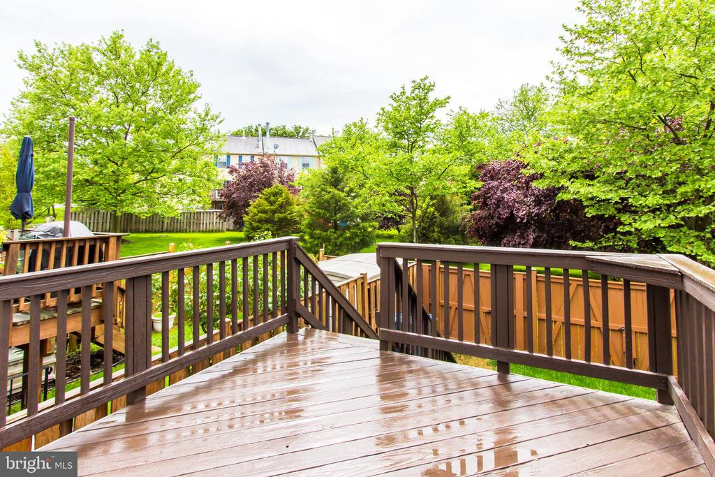 Beautiful Deck Backing to Trees - 44043 CHOPTANK TER, ASHBURN