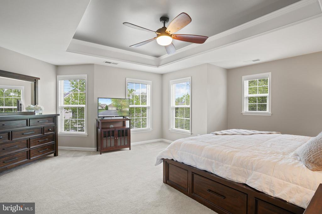 ...tray ceiling, lots windows and natural light! - 41959 ZIRCON DR, ALDIE